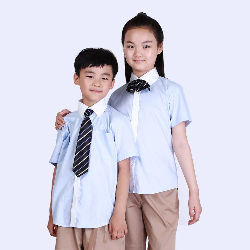 http://www.chenglongzy.com/uploadfiles/107.151.154.110/webid1227/source/201907/156332514832.jpg