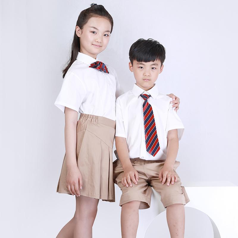 http://www.chenglongzy.com/uploadfiles/107.151.154.110/webid1227/source/201907/156332522659.JPG